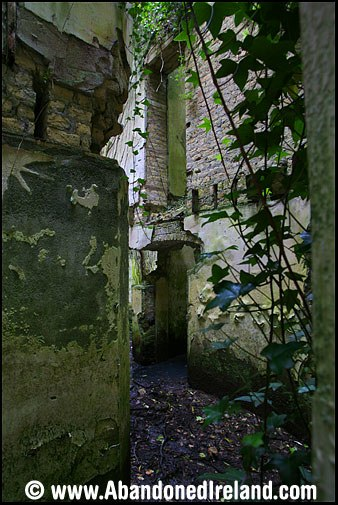 Glynwood House 4 (Abandoned Ireland)