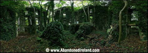 Glynwood House 8 (Abandoned Ireland)